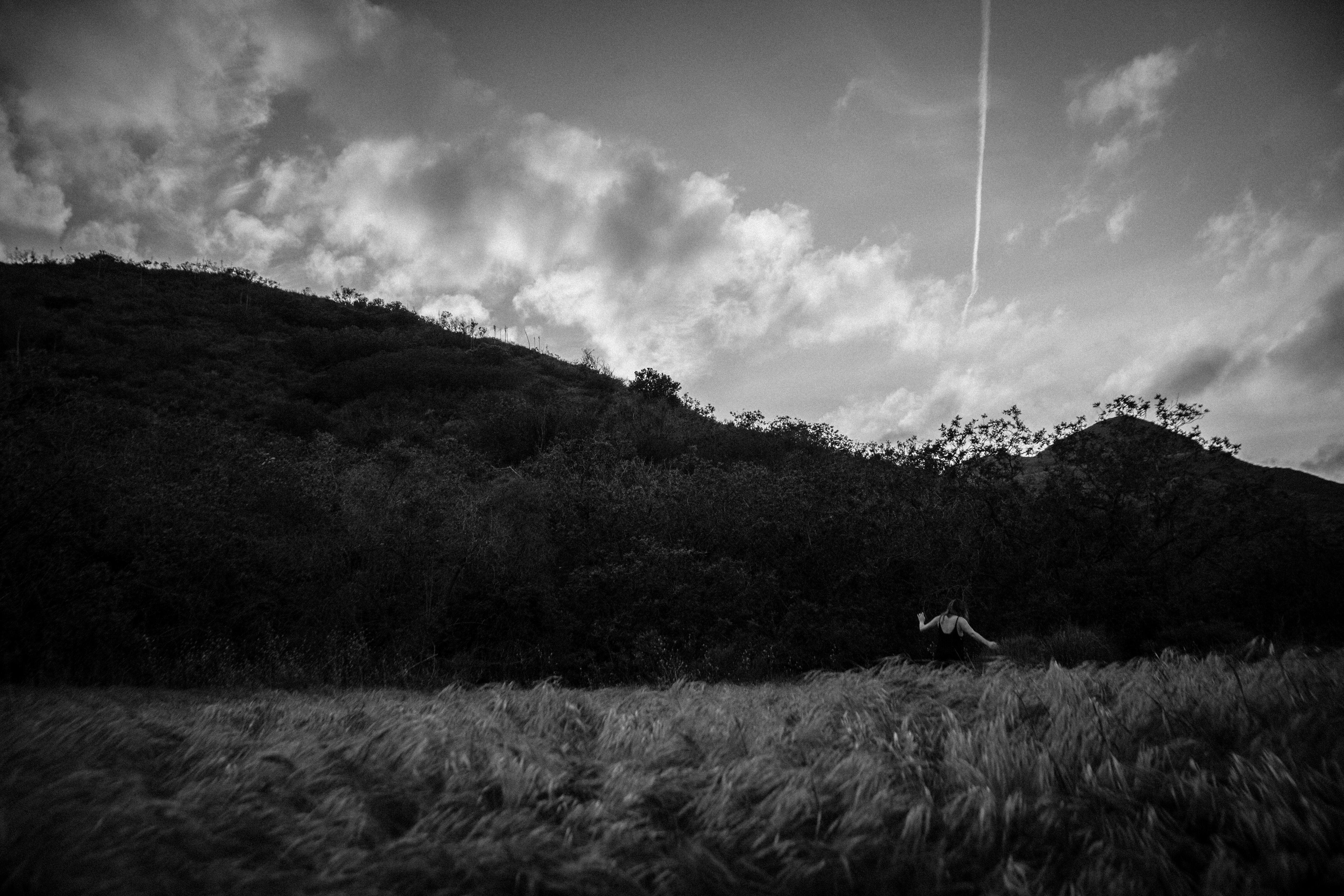 © 2015 Jen Rosenstein Photography